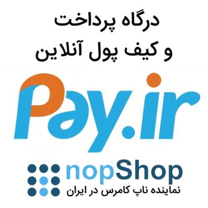 تصویر درگاه پرداخت Pay