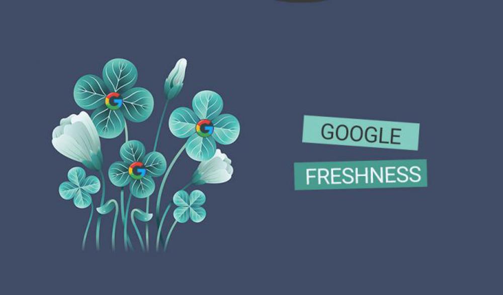 الگوریتم تازگی محتوا (Freshness) چیست؟