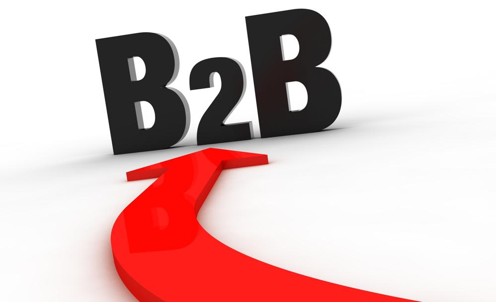 چرا برای پروژه تجارت الکترونیکی B2B خود، از ناپ کامرس استفاده کنید؟ ( قسمت دوم)